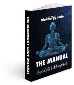 BioEnergy Code Manual